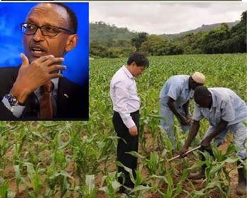 Paul Kagame renvoie des chinois chez eux